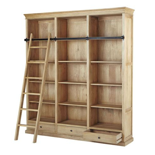 Mango Wood Bookcase With Ladder (View 8 of 20)