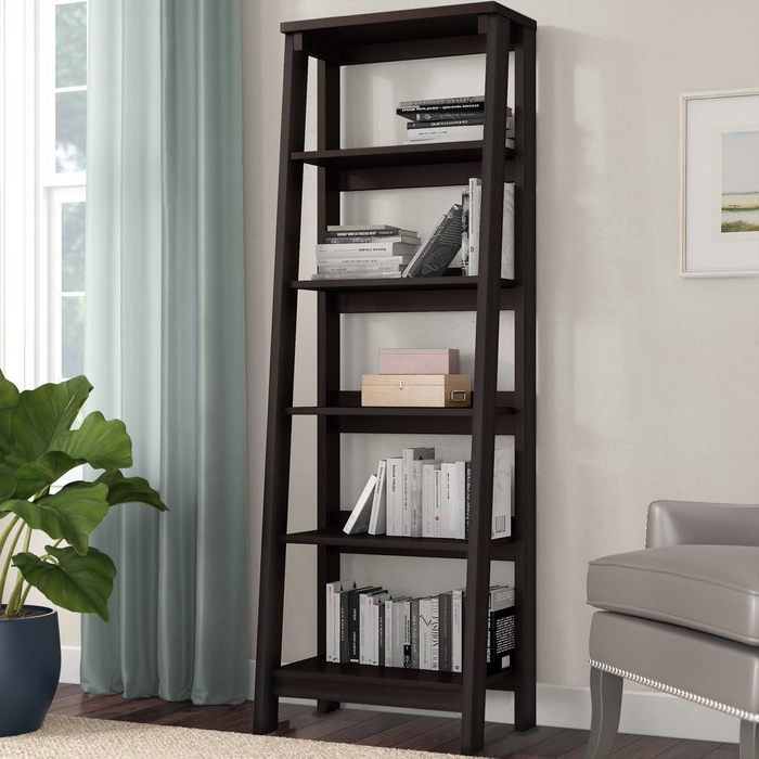 Massena Ladder Bookcases For Favorite Massena Ladder Bookcase (View 4 of 20)