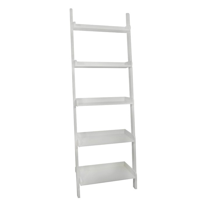 Most Recent Nailsworth Ladder Bookcase Throughout Nailsworth Ladder Bookcases (View 7 of 20)