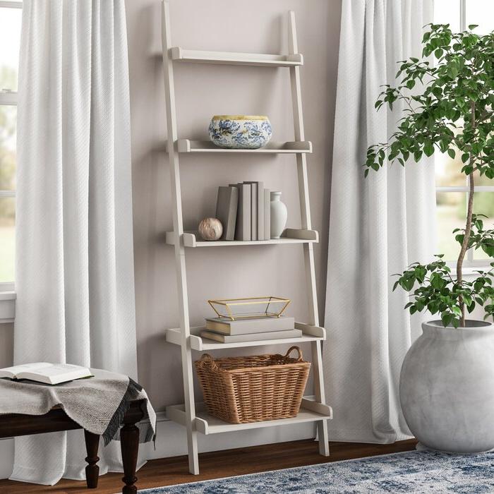 Nailsworth Ladder Bookcase Inside Latest Nailsworth Ladder Bookcases (View 12 of 20)