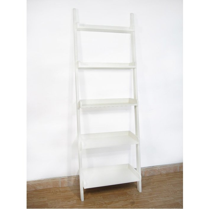 Nailsworth Ladder Bookcase Regarding Favorite Nailsworth Ladder Bookcases (View 14 of 20)