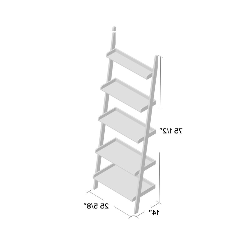 Nailsworth Ladder Bookcase Throughout Fashionable Nailsworth Ladder Bookcases (View 8 of 20)