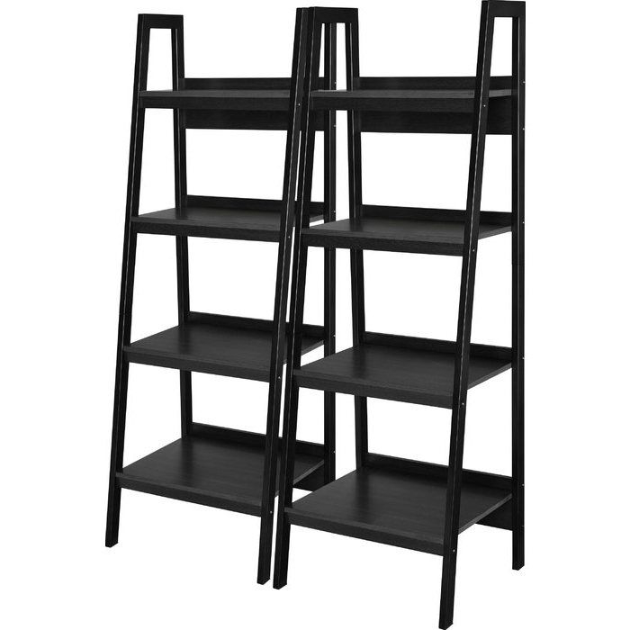 Newest Rupert Ladder Bookcases With Regard To Rupert Ladder Bookcase (Gallery 3 of 20)