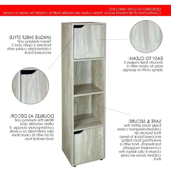 Preferred Strauss Cube Unit Bookcases With Cube Style Bookcase – Gameiq (View 11 of 20)