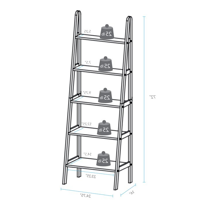 Ranie Ladder Bookcase With Newest Ranie Ladder Bookcases (View 6 of 20)
