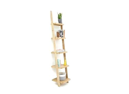Thin Ladder Shelf – Alquilervideobeambogota (View 15 of 20)