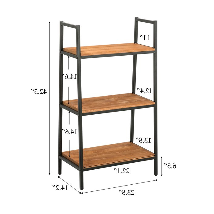 Well Known Henn Etagere Bookcases Regarding Hester Street Ladder Bookcase (View 15 of 20)