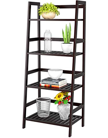 Well Liked Ladder Bookcases (View 14 of 20)