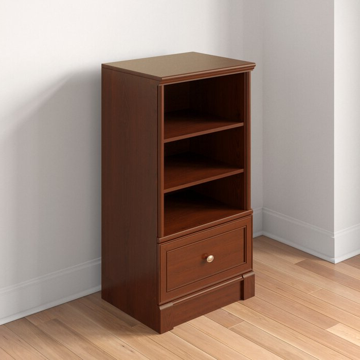 Well Liked Walworth Standard Bookcase Throughout Walworth Standard Bookcases (View 19 of 20)
