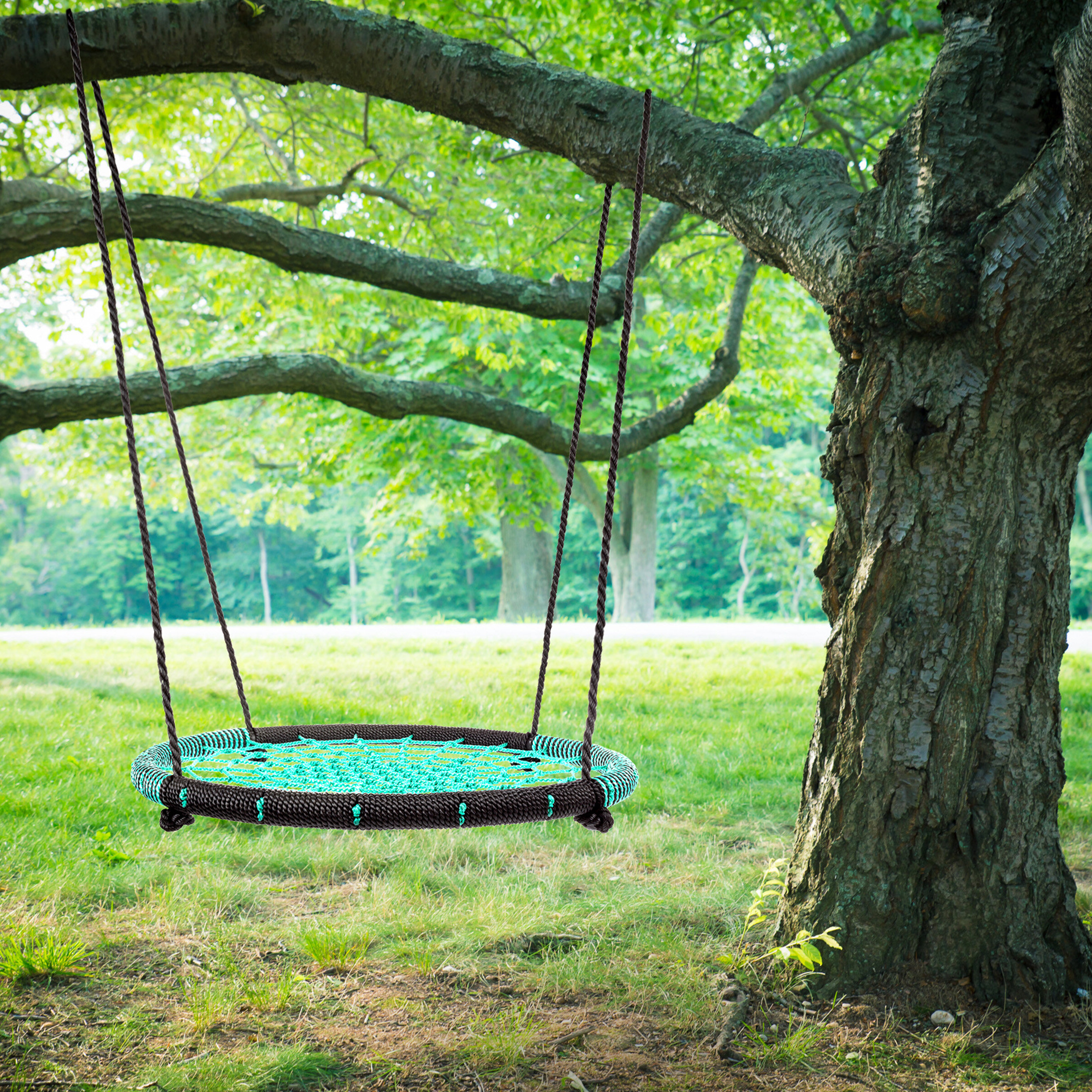 Newest Hey! Play! Spider Web Tree Swing Seat With Chains & Reviews With Swing Seats With Chains (View 15 of 30)