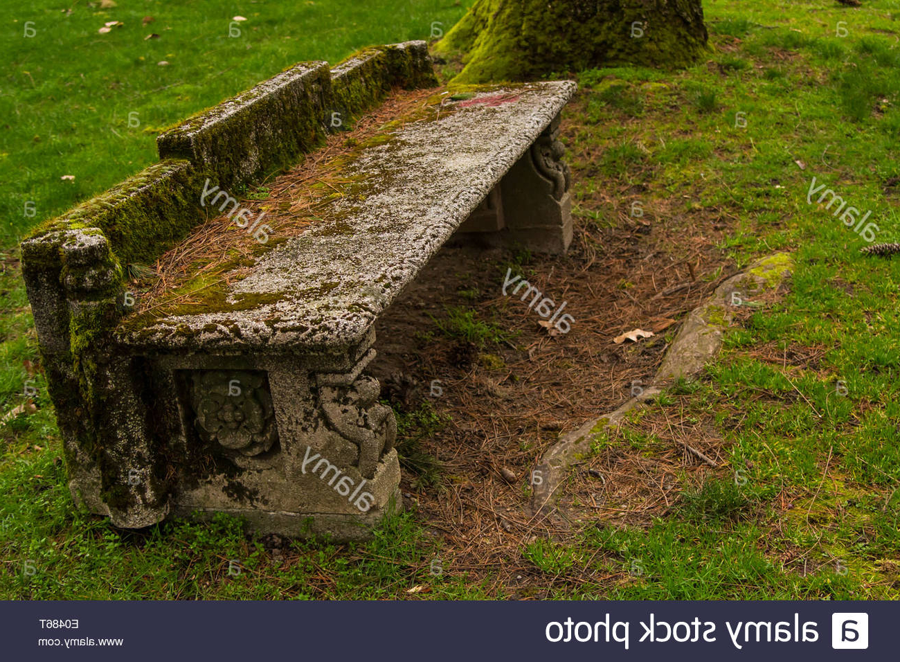 An Old Stone Bench, Covered In Moss Stock Photo – Alamy With Most Current Harpersfield Wooden Garden Benches (View 29 of 30)