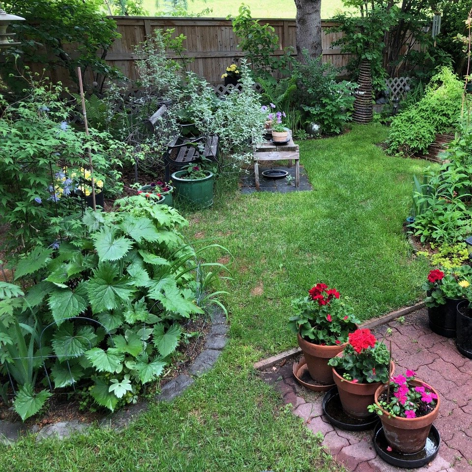 Backyard Ideas: The Rise Of The Backyard Oasis In Calgary Ab Regarding Most Recently Released Glendale Heights Birds And Butterflies Garden Stools (View 17 of 30)