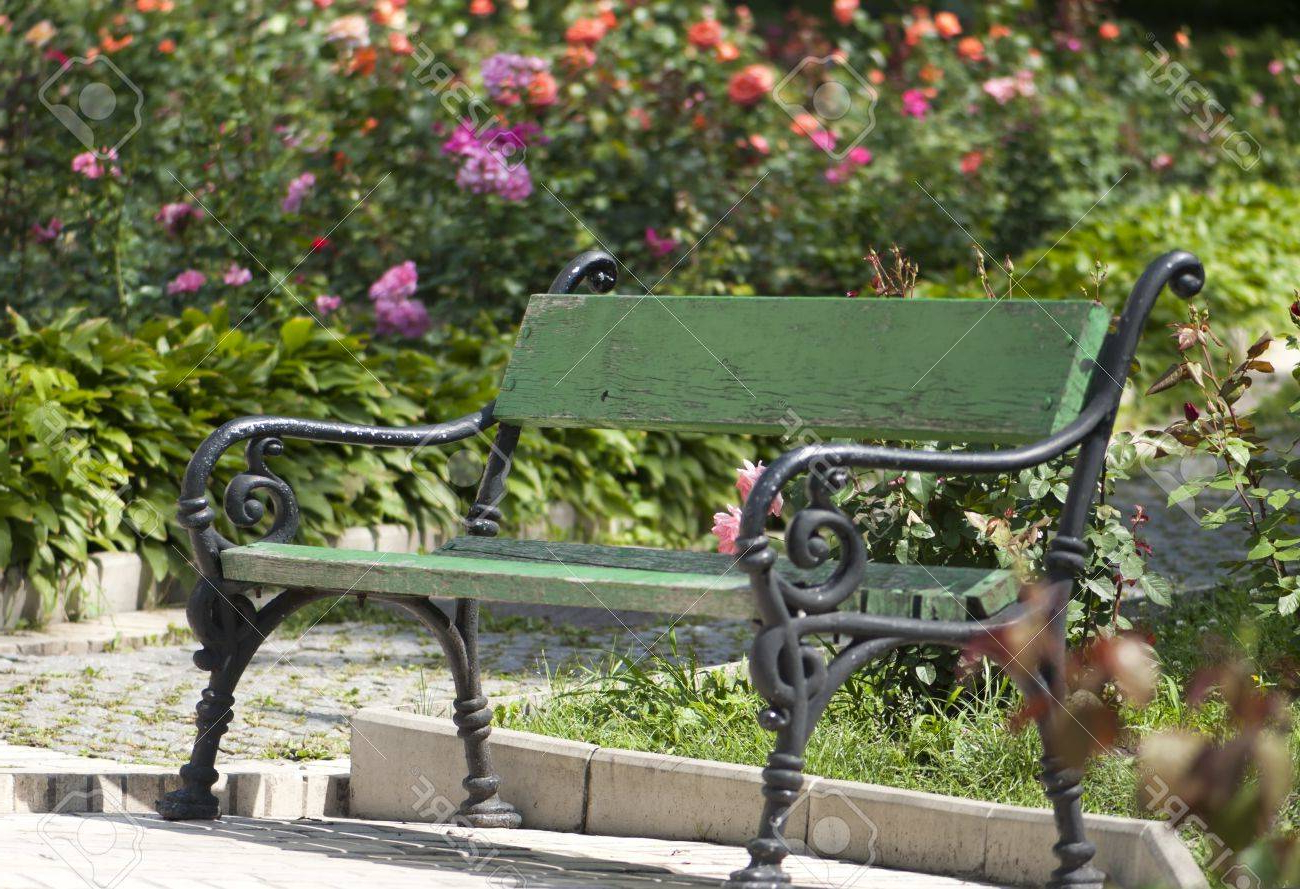 Preferred Blooming Iron Garden Benches For Wrought Iron Garden Bench Amid Blooming Roses (View 8 of 30)