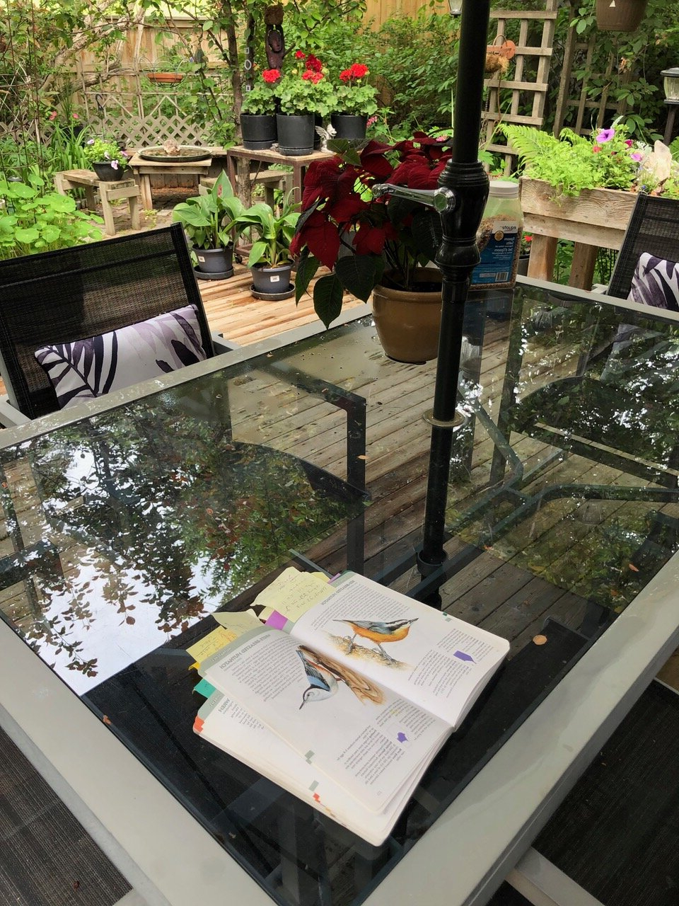 Recent Backyard Ideas: The Rise Of The Backyard Oasis In Calgary Ab Inside Glendale Heights Birds And Butterflies Garden Stools (View 21 of 30)