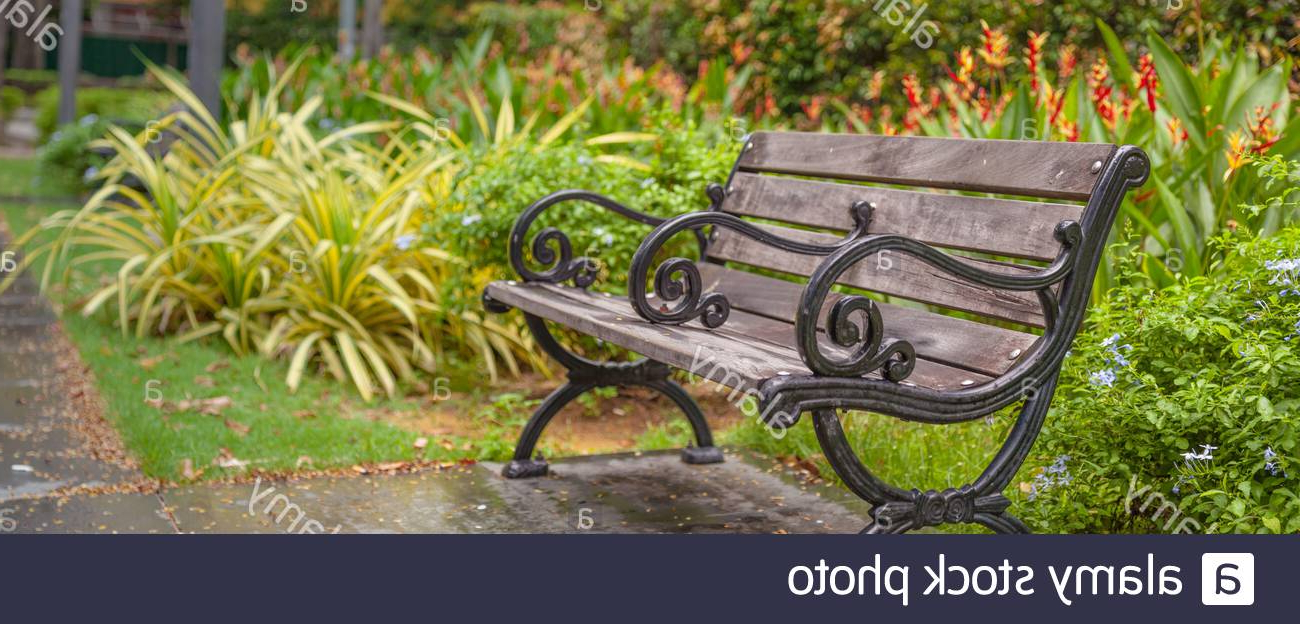 Strasburg Blossoming Decorative Iron Garden Benches In 2020 Page 2 – Public Garden Bench High Resolution Stock (View 9 of 30)