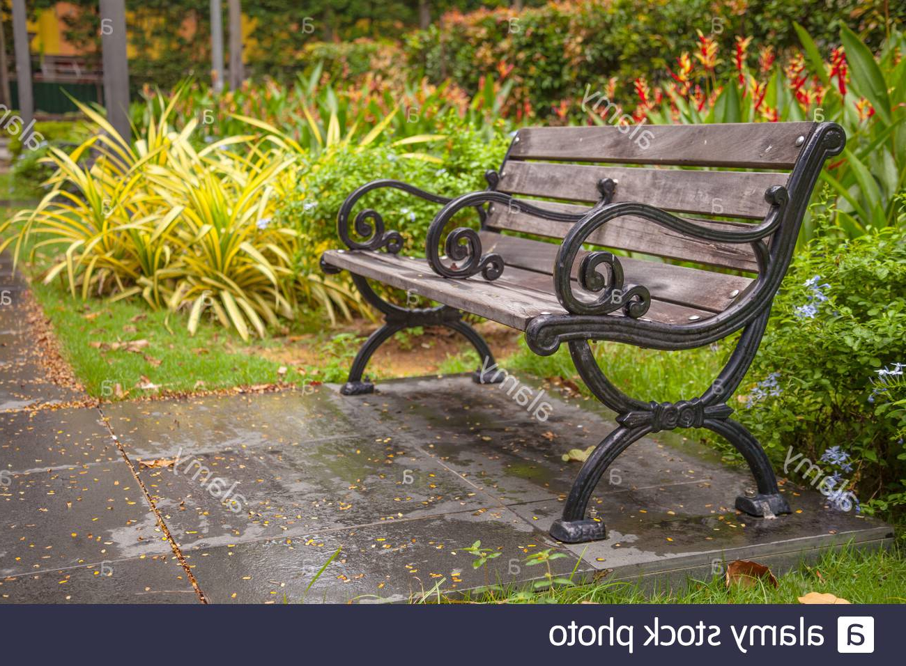 Strasburg Blossoming Decorative Iron Garden Benches Regarding Well Known Page 2 – Public Garden Bench High Resolution Stock (View 8 of 30)