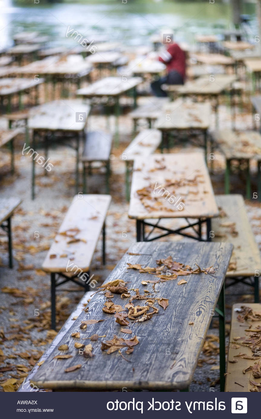 Well Known Beer Garden, Tables, Benches, Autumn Foliage Stock Photo – Alamy For Gabbert Wooden Garden Benches (View 30 of 30)
