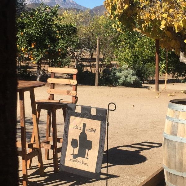 Popular Lau Barrel Chairs Within Fotos Em Vinícola Castillo Ferrer – San Antonio De Las Minas (View 23 of 30)