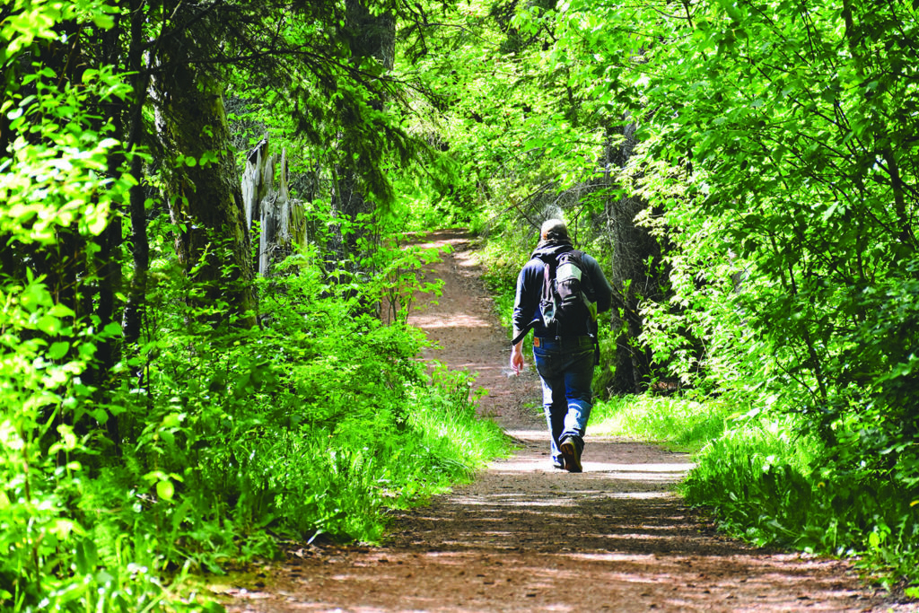 Red Deer: It Would Take You Days To Hike This City's Trail System Inside Most Up To Date Deer Trail Armchairs (View 23 of 30)