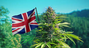 """Richmond Valley Tv Stands For Tvs Up To 78"""" Regarding Most Up To Date Londonweed – Top London & Uk & Ireland & Scotland (View 3 of 7)"""