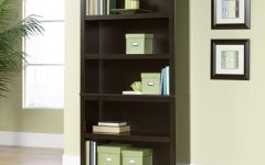 Sears Bookcases