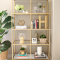 Gold Metal Bookcases