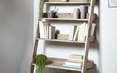 Ladder Bookcases