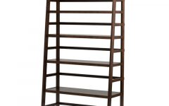 Mayna Ladder Bookcases