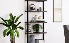 Moskowitz Ladder Bookcases