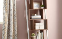 Bostic Geometric Bookcases