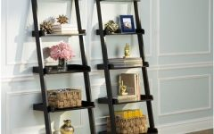 Nailsworth Ladder Bookcases