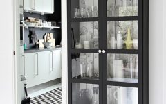 Black Bookcases With Glass Doors