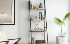 Almanzar Ladder Bookcases