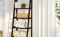 Ranie Ladder Bookcases