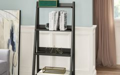 Riddleville Ladder Bookcases