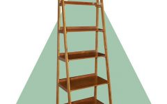 Brock Ladder Bookcases