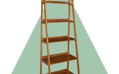 Brock Ladder Bookcases