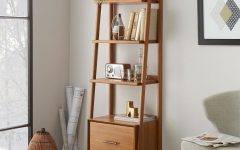 West Elm Bookcases